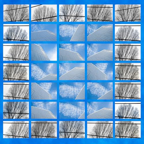BlueSkyTrees